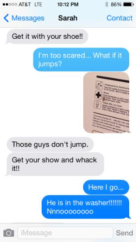 text with Sarah2